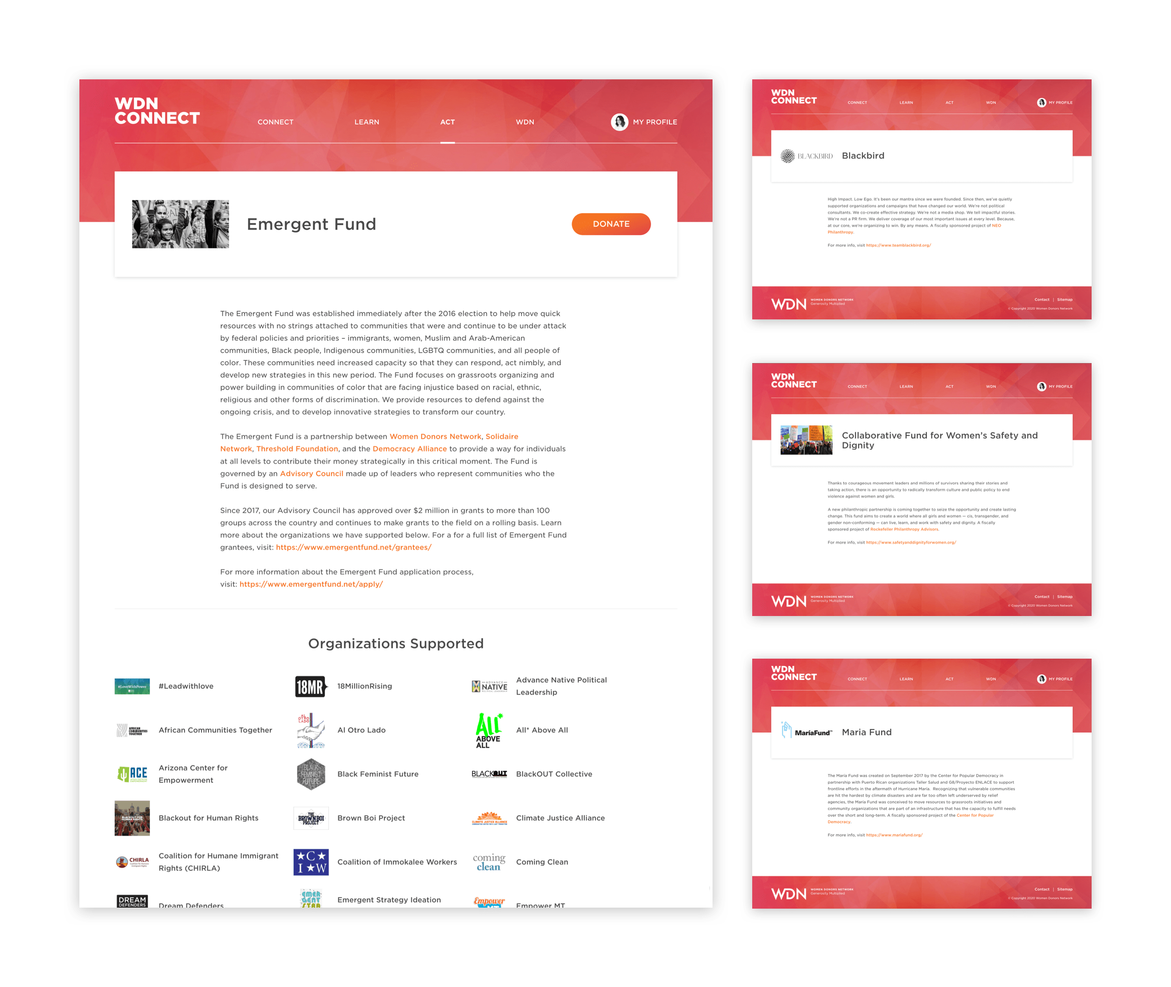 Desktop visual of a single initiative page